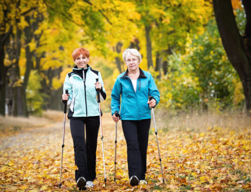 Toronto Seniors Staying Active to Stay Independent and Reduce Risk of Falls